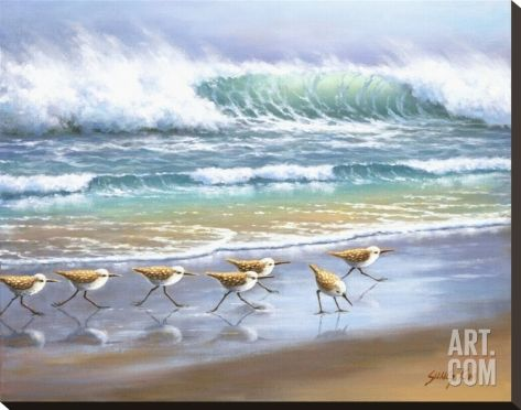 Piper Wave Stretched Canvas Print by Sung Kim at Art.com