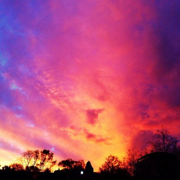 Johannesburg - Sunset - Photo Shared By @MelAttree