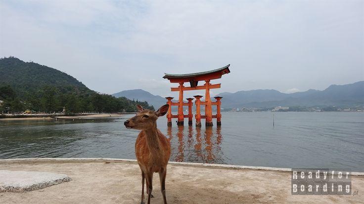 Miyajima, Itsukushima Shrine Japan,  Japonia z #readyforboarding