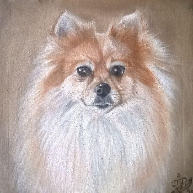 Pomeranian 1 {Commission} ~ Block Mounted Framed Oil Painting by Dawn Du Preez #DawnDuPreez