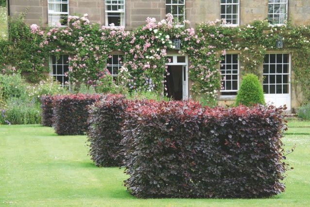31 wonderful garden design courses derbyshire for Garden design derbyshire