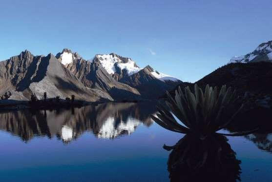 El Nevado del Cocuy es el glaciar más grande de Colombia y está ubicado en el centro oriental del pa... - Viceministerio de Turismo