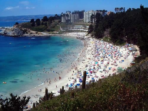 Canelillo Beach: the best beach I've been to in Chile. A 30 minute drive from Viña del Mar.