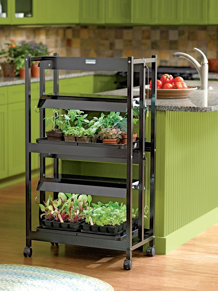 Plant Grow Lights with Two Shelves | Gardener's Supply