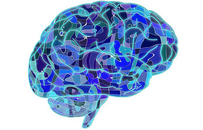 Las 101 Mejores Frases de la Psicología
