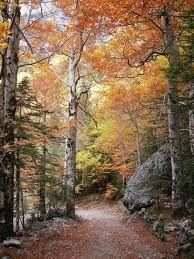 Resultado de imagen de fotos de ordesa en otoño