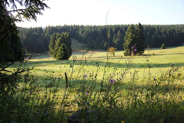 Herbstwanderung in Oberhof | Flickr - Fotosharing!
