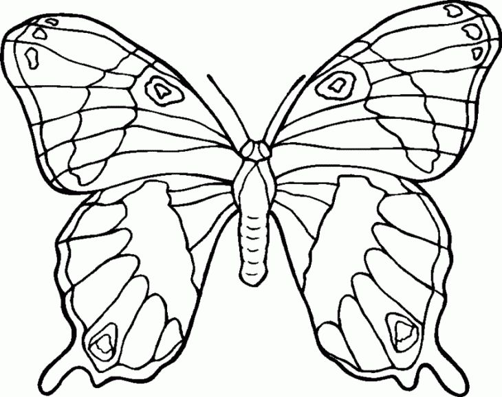 Printable Butterfly Coloring Page Free