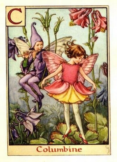Columbine Flower Fairy Vintage Print by Cicely Mary Barker. first published in London by Blackie, 1934 in A Flower Fairy Alphabet.