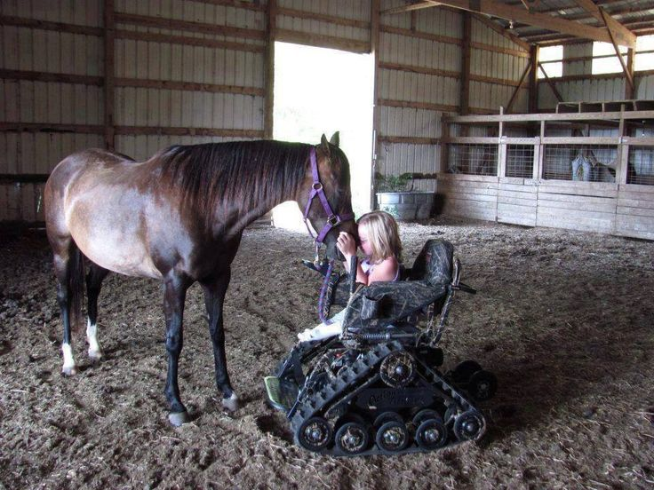 My ultimate dream is to have a Centre for disabled children to come and hang out with rescued horses! Learn to ride and learn how to develop skills that will improve their quality of life! My big dream! #myforeverdream