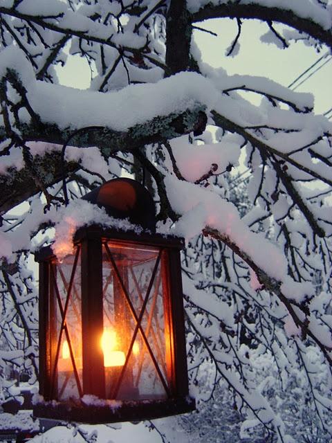 a warm glow on a snowy night