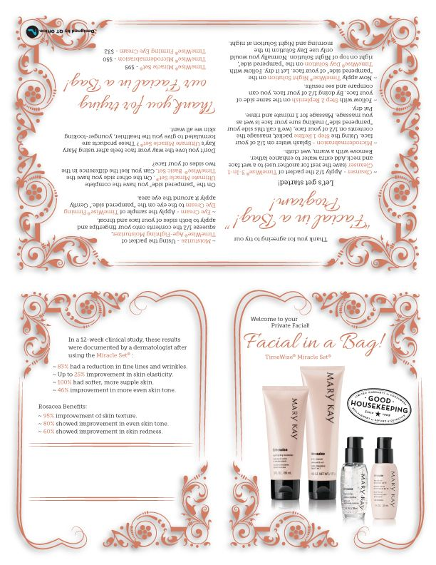 Anne Hanson Mary Kay Sales Diretor-United States Facial In A Bag