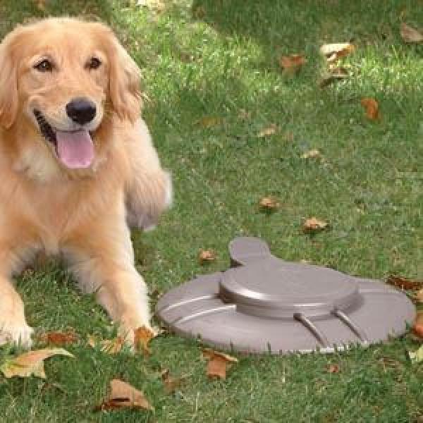 Mestverwerker metaal om drollen van uw honden zonder overlast te verwerken.Deze verteerkuip is bruikbaar voor het omzetten van hondendrollen van 4 kleine of 2 grote honden.Geschikt voor in een goed waterdoorlaatbare ondergrond.