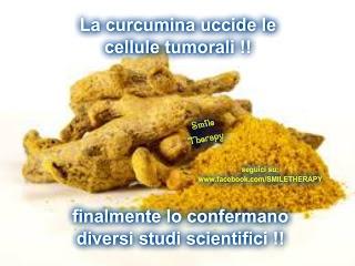 La curcumina uccide le cellule tumorali, lo confermano diversi studi scientifici a riguardo.
