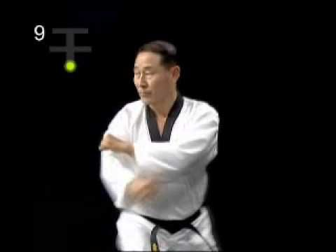 Koryo [official form of taekwondo] Kukkiwon. I use this guy's videos to help me get my techniques tight.