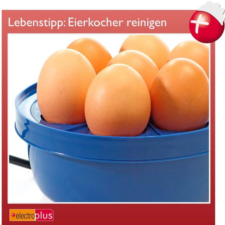 Unser Lebenstipp im April 2013: Eierkocher reinigen leicht gemacht