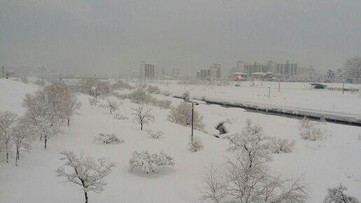 강원 강릉시의 젖줄인 남대천 설경