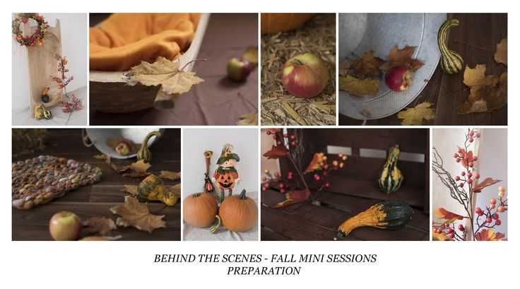 autumn mini preparation / studio photography