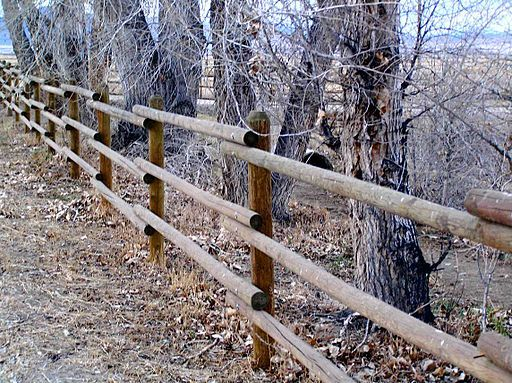 How to Build a Horse Fence: A Step by Step Guide