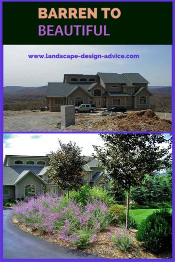 Beautiful front yard design. Before and after photos show what can be done! Russian Sage and Purple Leaf Plum trees line the driveway entry...very colorful. Learn more at http://www.landscape-design-advice.com/front-yard-landscaping-ideas.html