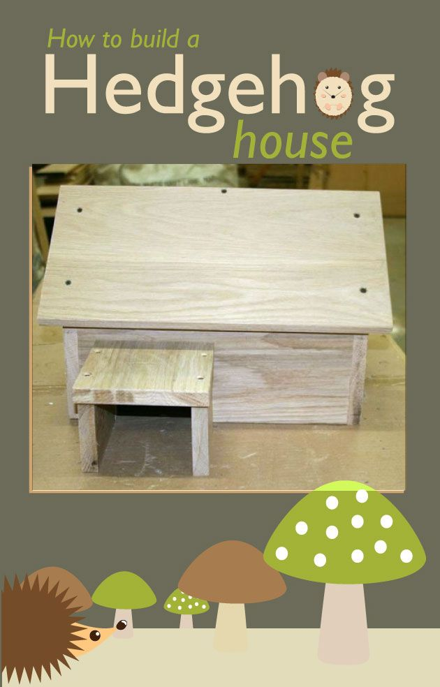 How to Build a Wood Hedgehog House | DIY for Life