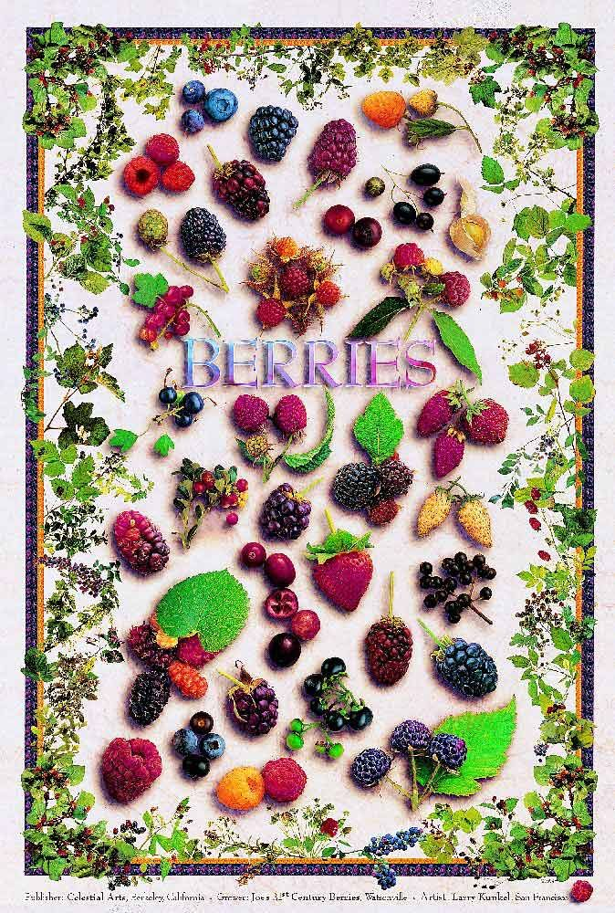 Like to have all these growing in my backyard!Fruit Berries Posters, Berries Yummy