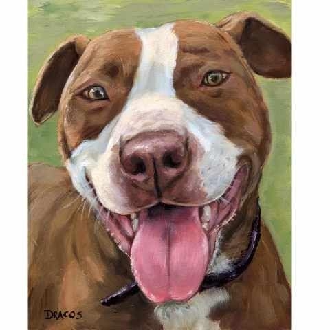 25 Best Ideas About Pit Bull Art On Pinterest Pit Bull