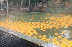 神戸サウナより  12月になり冷え込んできましたね 来週12月21日水は冬至冬も本番を迎えます  高知県の中屋柑橘農園さんより今年もたくさんの柚子が届きました ゆずの良い香りがあふれています  季節ごとにいろいろなお風呂を楽しんでいただいておりますが やっぱりゆず湯は一番人気  今年は12/17土18日冬至当日の21水の3日間実施 1日1000個の柚子を使用します バックヤードには既に3000個のゆずの香りが漂っています  無病息災を祈願する昔からの風習 また柚子は実るまでに長い年月がかかるので 長年の苦労が実りますようにとの願いも込められているようです   ぜひ天然温泉と本場高知産ゆずでぽっかぽかに温まってくださいね  ゆず湯 2016.12/17土18日21水 メンズフロア露天風呂 レディスフロア小浴槽にて実施  フロントにて高知県産ゆずを1個100円で販売する予定です tags[兵庫県]