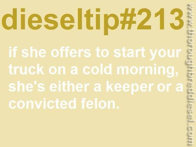 Dieseltip 213 - Keeper or convicted felon