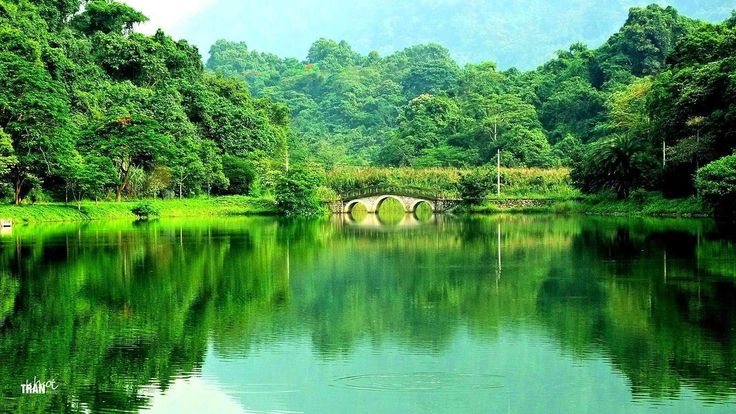 Cuc Phuong Nationalpark+++ Cuc Phuong national park- #AsiaticaReisen