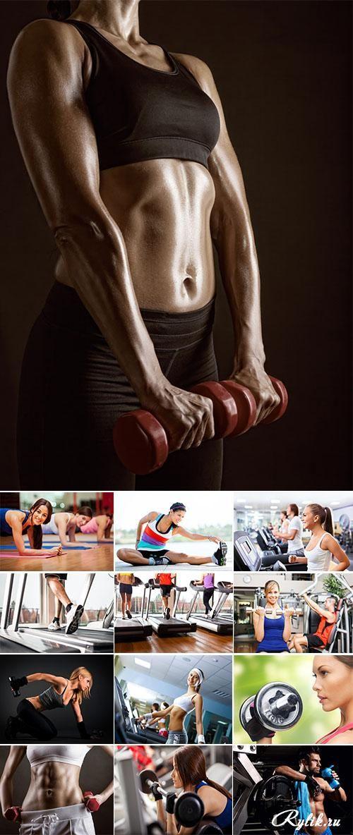Финтнес - девушки в спортивном, тренажерном зале фотоклипарт. Stock Photo: Fitness center