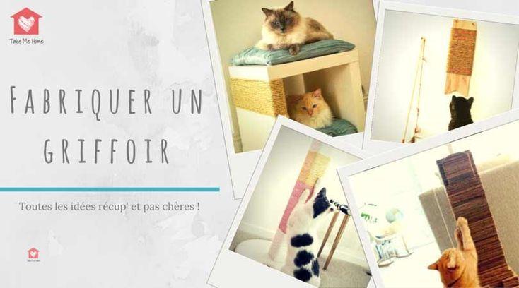 les 25 meilleures id es de la cat gorie griffoir sur pinterest griffoir pour chat griffures. Black Bedroom Furniture Sets. Home Design Ideas