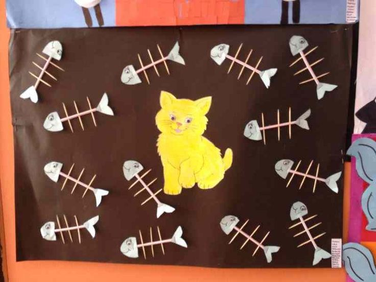 cat bulletin board