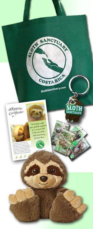 Adopt a Sloth! Compadres Adoption Pack