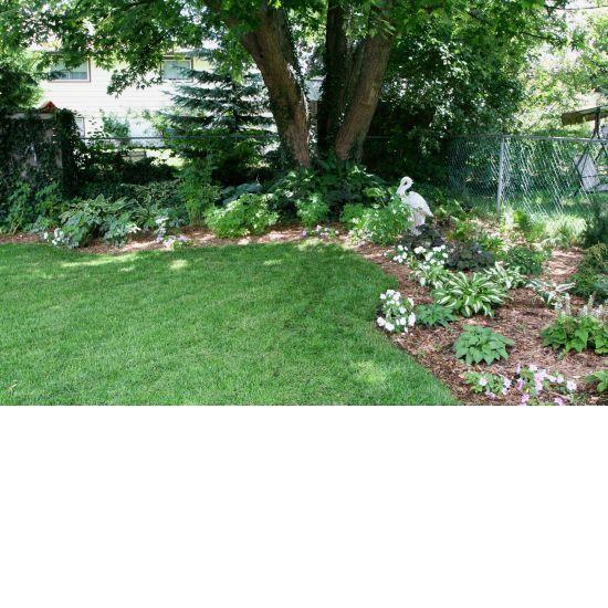 Naturally beautiful backyard garden