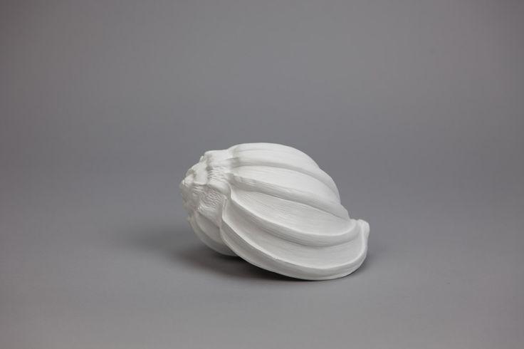 Búzio Branco 20 x 15 x 13 cm | A Loja do Gato Preto | #alojadogatopreto | #shoponline | referência 78264539