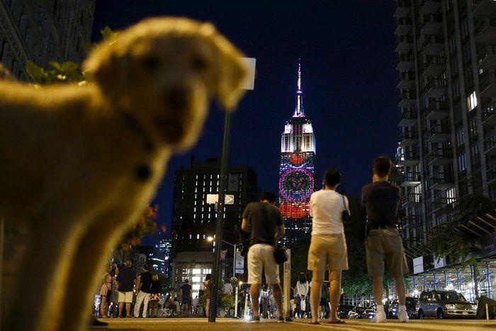Ο Σεσίλ, το λιοντάρι στο πιο εμβληματικό κτίριο της Νέας Υόρκης « Aixmi.gr