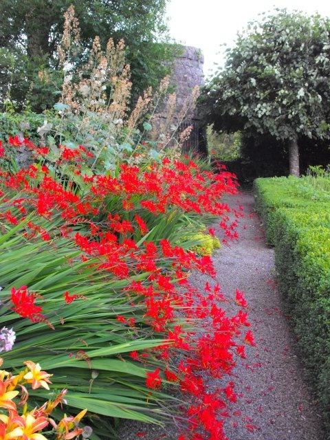 Best Irish Garden Images On Pinterest Gardens Dream Garden
