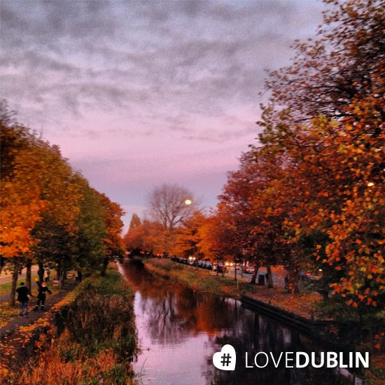 Another stunner of the Grand Canal by @sarahk81 #LoveDublin