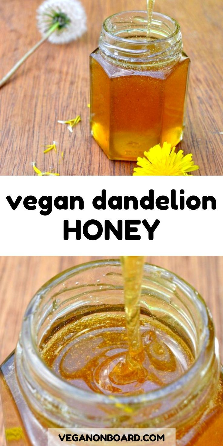 Vegan Dandelion Honey Recipe In 2020 Vegan Honey Recipe Honey Recipes Foraging Recipes