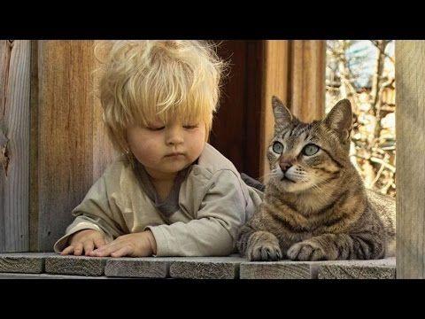 Les véritables amitiés entre des chats et des bébés ! - YouTube