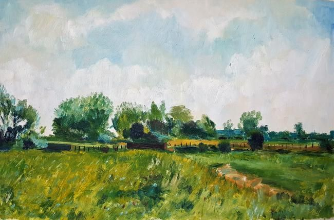 Fields Near Straw's Bridge, Ilkeston by Neil Feldman