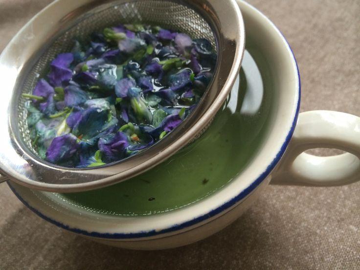 Domácí jarní detoxikační sirup z fialek (mmj proti kašli)