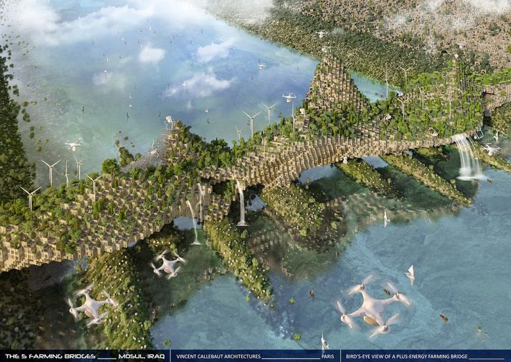 #Architecture: 3D-printing spiders and flying drones: The blue-sky plan to rebuild Mosul