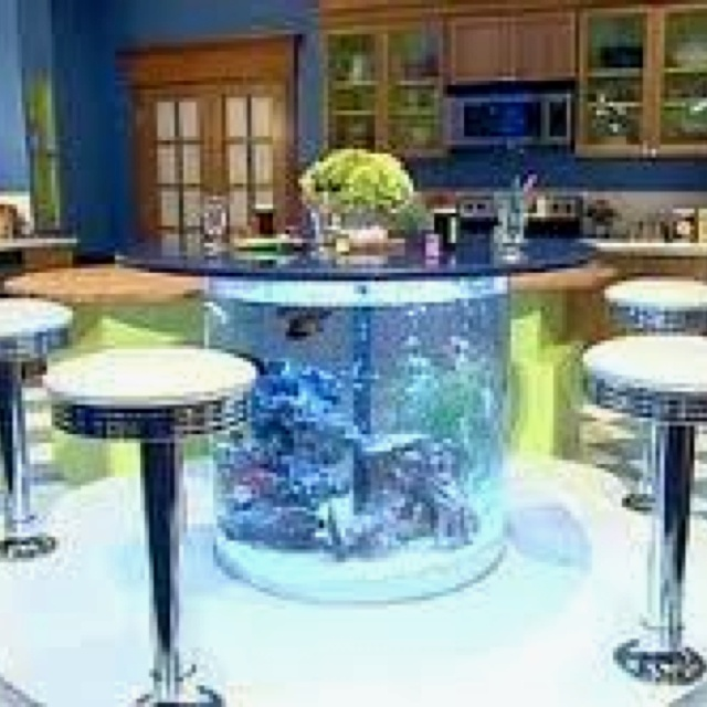 fish aquarium table aquariums pinterest