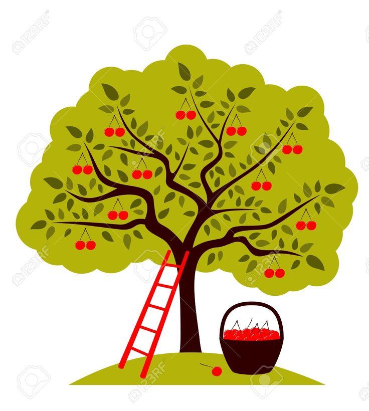 яблоня картинка для детей