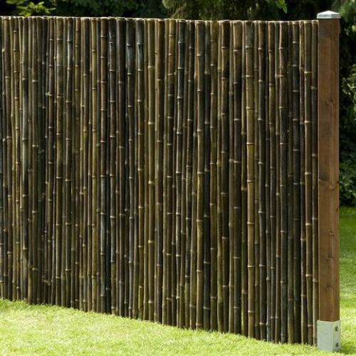Details Zu Sichtschutz Black Bambus Gartenzaun Windschutz Bambuszaun