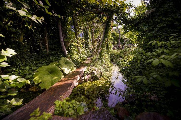die besten 25 tropischer garten ideen auf pinterest tropische pool landschaftsbau tropischer. Black Bedroom Furniture Sets. Home Design Ideas