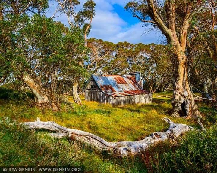 Wallaces hut, Falls Creek