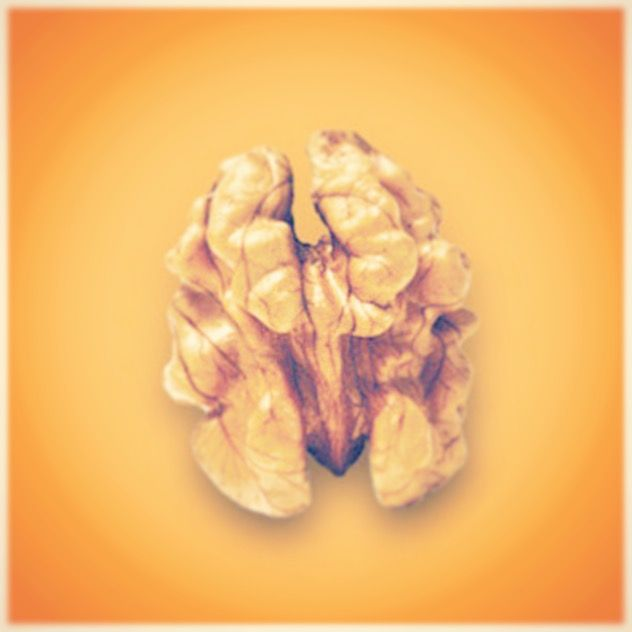 Did you know that Walnuts may help to promote brain heath. Walnuts are known to be a good source of omega-3 fatty acids!   #Walnuts #Nuts #Food #Yum #Facts #Fact #Walnut  We have a granola with walnuts :) http://www.divinakrunch.com/
